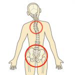 背骨の歪みが自然治癒力を低下させる