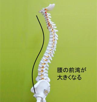 重心が崩れ腰椎の前方への湾曲が大きくなる