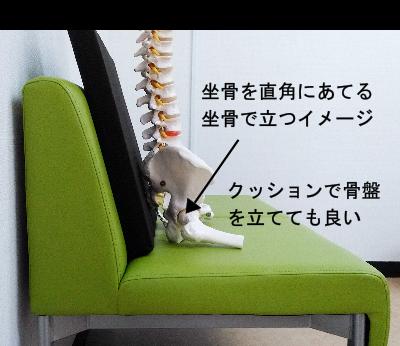 良い座り方-坐骨で立つ